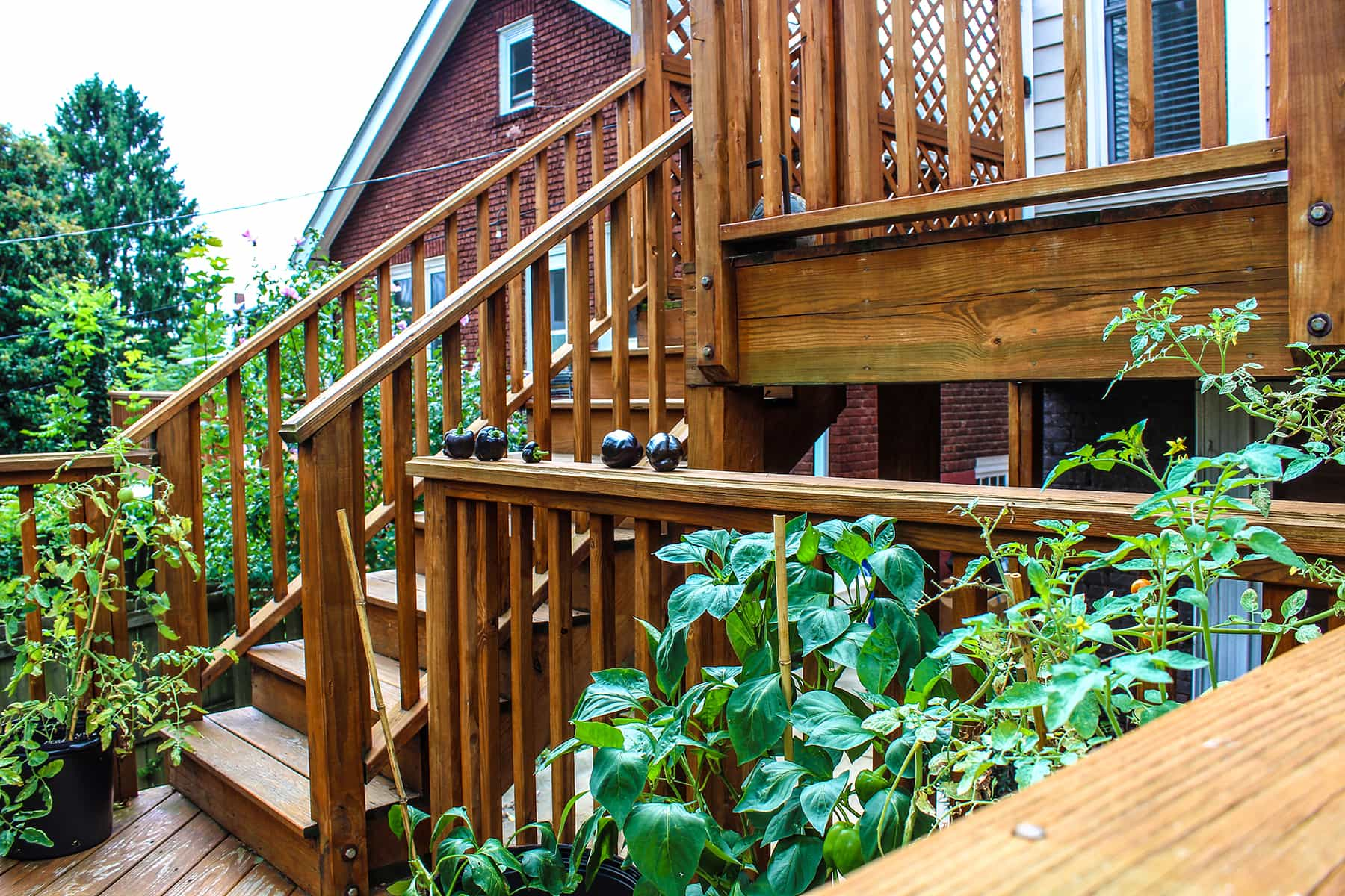 Our Four Bedroom Home, Which Is Located On A Quiet, Safe Street In The  Downtown Area Of Asheville, NC Is Perfectly Suited To Provide Living  Assistance For ...